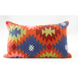 Cushion multicolor 2